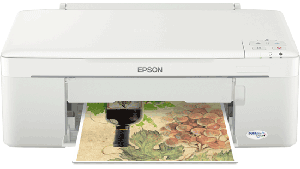 suamay in epson ME320